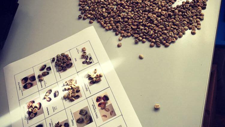 Caffè Monorigine